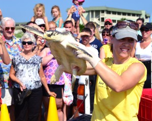 Christi Hughes of the Sea Turtle Hospital holds Kemp in the air.