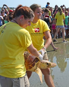 Jessica Turner (left) and Jamie Frye, interns at the Aquarium help Mitchel home.