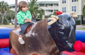 Riding the Rednosed Bull