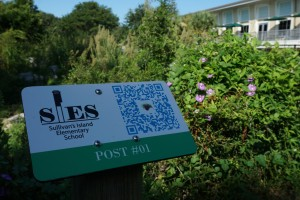 One of Andrew Killough's signs. The QR code can be scanned to send the visitor to the rail's website and more information on the nature surrounding them.
