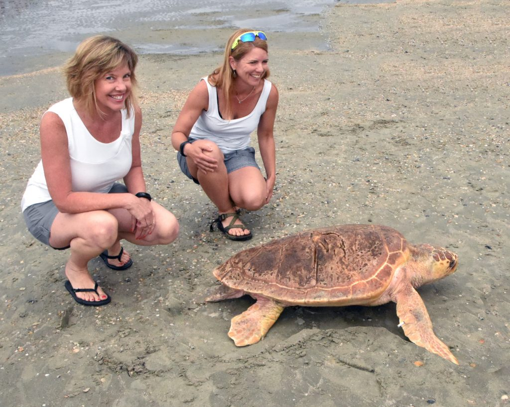 Sullivan's Island resident and veterinary ophthalmologist Dr. Anne Cook, right, smiles as her patient Boyles finally sees his way to the ocean.